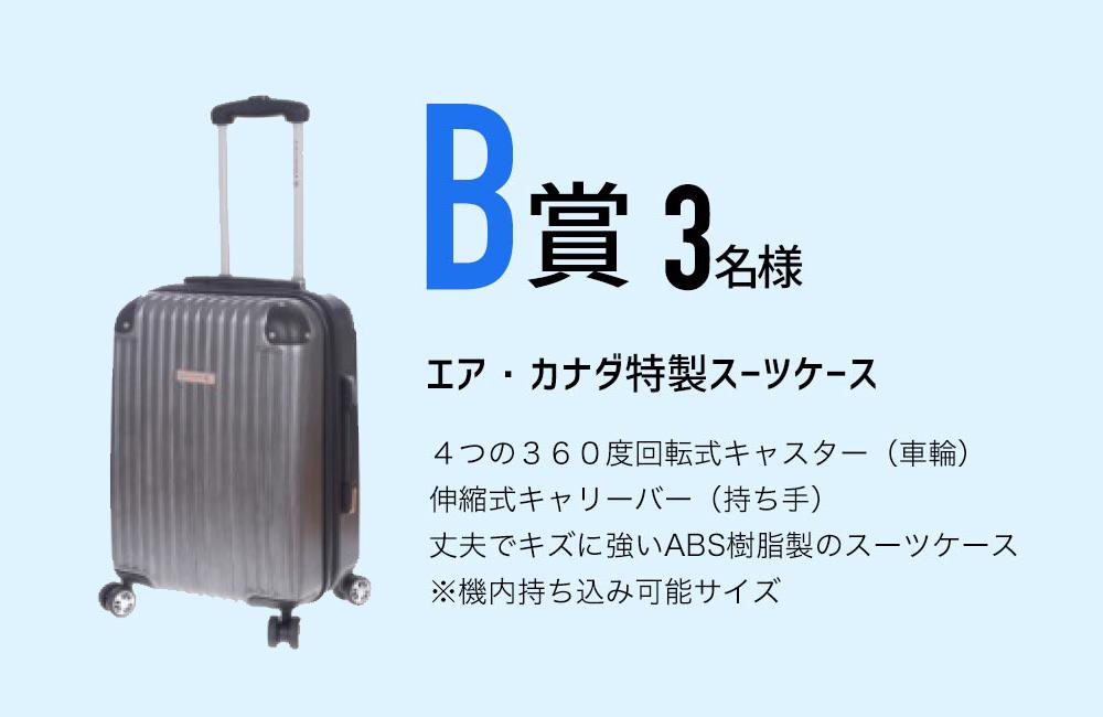 エア・カナダ特製スーツケース